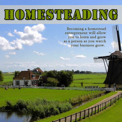 Homestead PLR